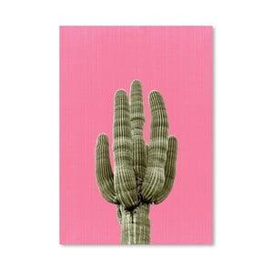 Plakat Cactus On Pink