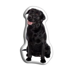 Poduszeczka Adorable Cushions Czarny labrador
