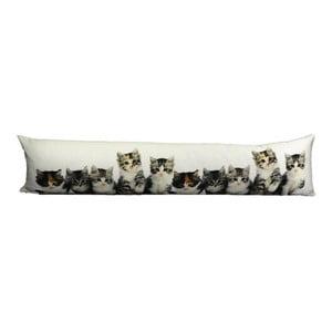 Poduszka Kittens 20x90 cm
