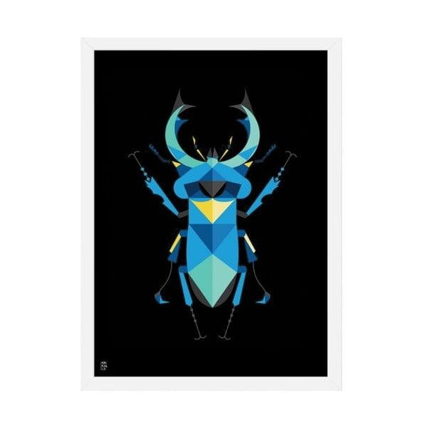 Plakat Stag Beetle Black, 50x70 cm