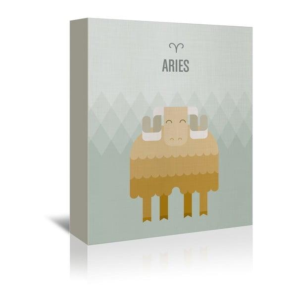 Obraz na płótnie Aries