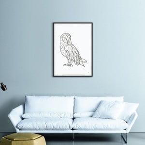 Plakat Barn Owl