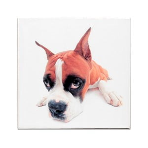 Drewniana tabliczka Puppie's Eye, 30x30 cm