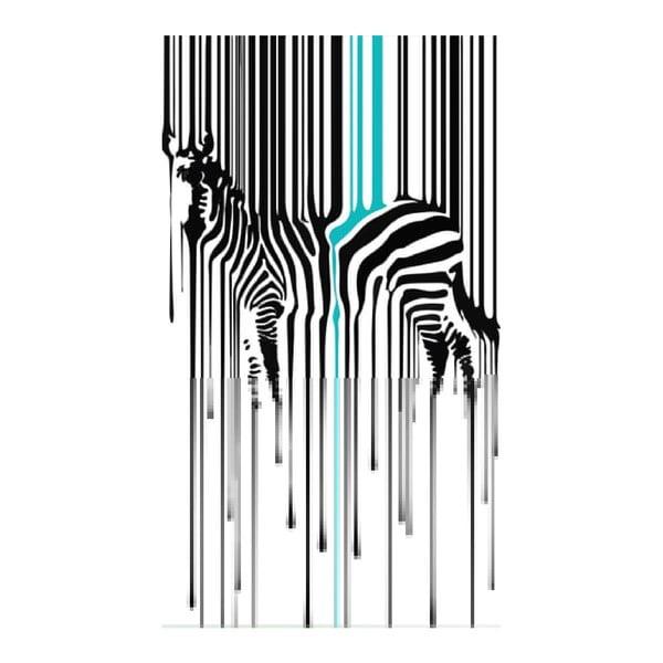Obraz na płótnie Zebra, 70x100 cm