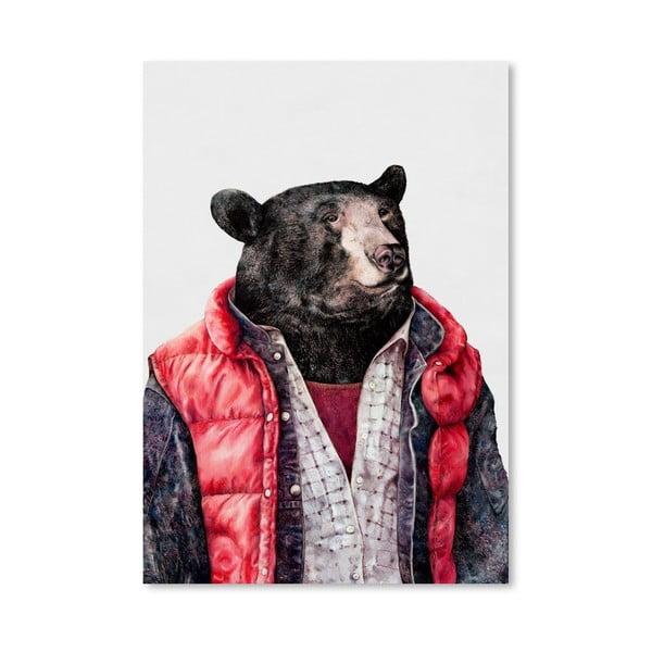 "Plakat ""Black Bear"", 42x60 cm"