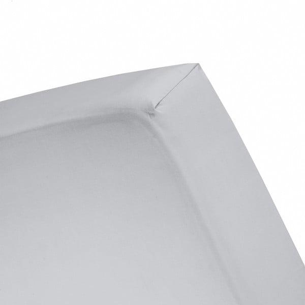 Prześcieradło Cinderella Grey, 200x200 cm