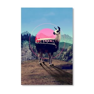 "Plakat autorski ""Llama"""