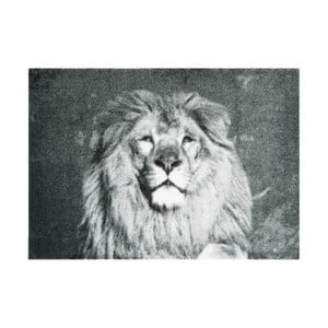 Szara wycieraczka Mint Rugs StateMat Lion, 50x70 cm