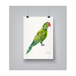 Plakat Americanflat Parrot, 30x42 cm
