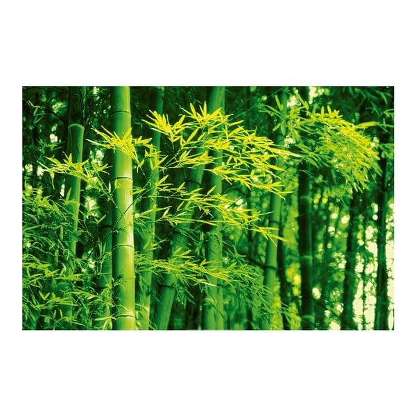 Plakat wielkoformatowy Bamboo In Spring, 175x115 cm