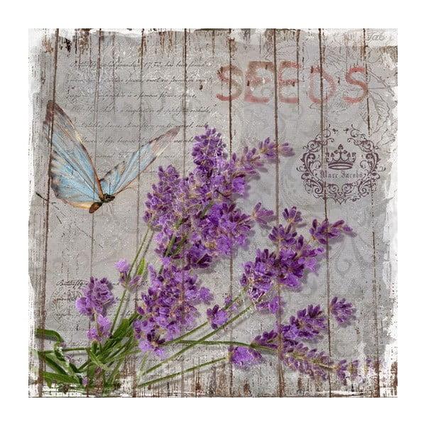 Obraz Nasiona lawendy, 40x40 cm