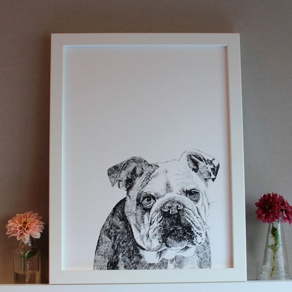 Plakat Leonard The British Bulldog, 30x40 cm