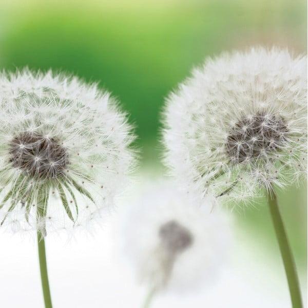 Szklany obraz Blow Balls 30x30 cm
