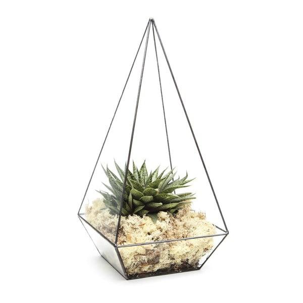 Terrarium z roślinami Super Aztec Pyramid