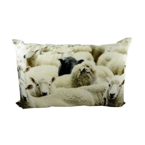 Poduszka Sheep Black 60x40 cm