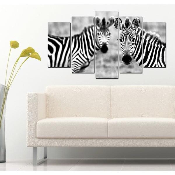 5-częściowy obraz Zebry