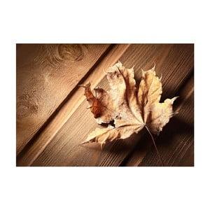 Dywan winylowy Leaf, 52x75 cm