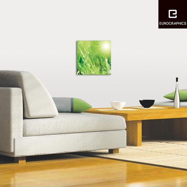 Szklany obraz Lush Morning Grass, 30x30 cm