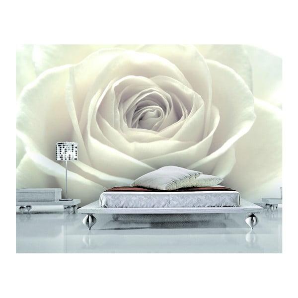 Fototapeta Białe róże, 400x280 cm