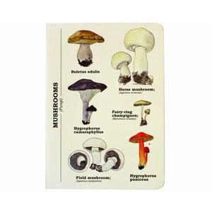 Notes Mushroom
