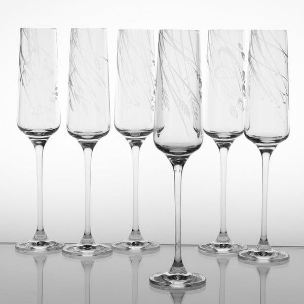 Zestaw 6 kieliszków do szampana Wielicha na dole