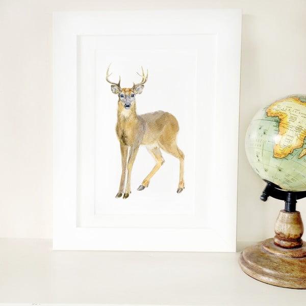 Plakat Deer A4