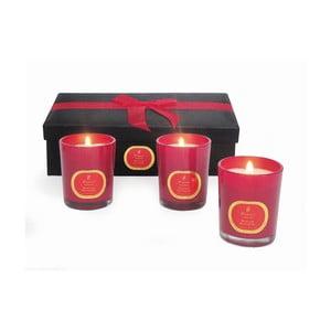 Zestaw świeczek Winter Wonders Cinnamon & Clove, 3 szt.