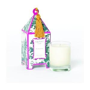 Zestaw 2 świeczek Plum Chypre, 12-15h palenia
