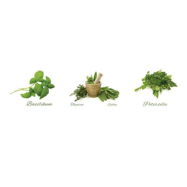 Naklejki Different Herbs
