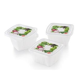Zestaw 3 pojemników na żywność Fresh, 0,25 l