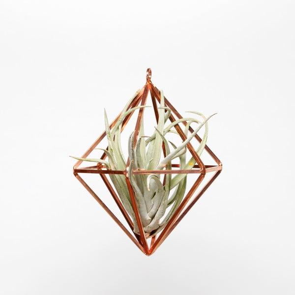 Terrarium wiszące z roślinami Prism, 20 cm