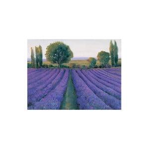 Obraz Lavender Field, 60x80 cm
