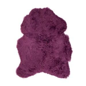 Fioletowa skóra owcza z krótkim włosiem, 90x60 cm