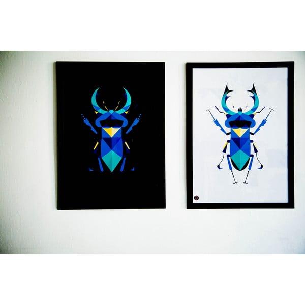 Plakat Stag Beetle Color, 50x70 cm