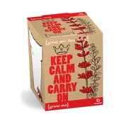 Zestaw do uprawy roślin z ziarnami lawendy Gift Republic Keep Calm and Carry On