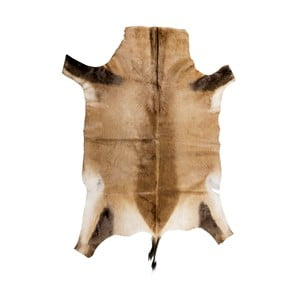 Brązowa skóra z antylopy Blesbok, 95x80cm