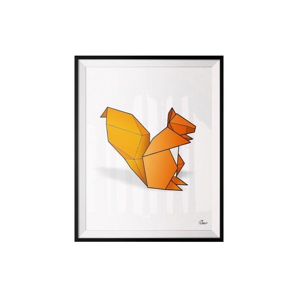 Plakat Squirrel, 30x40 cm