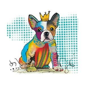 Obraz Eurographics Doggy Diva, 20x20 cm