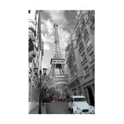 Foto-obraz Eiffel Tower, 81x51 cm