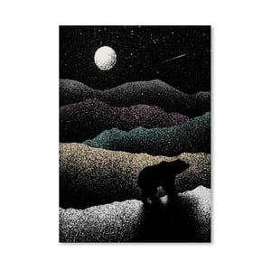 Plakat Wandering Bear, 30x42 cm