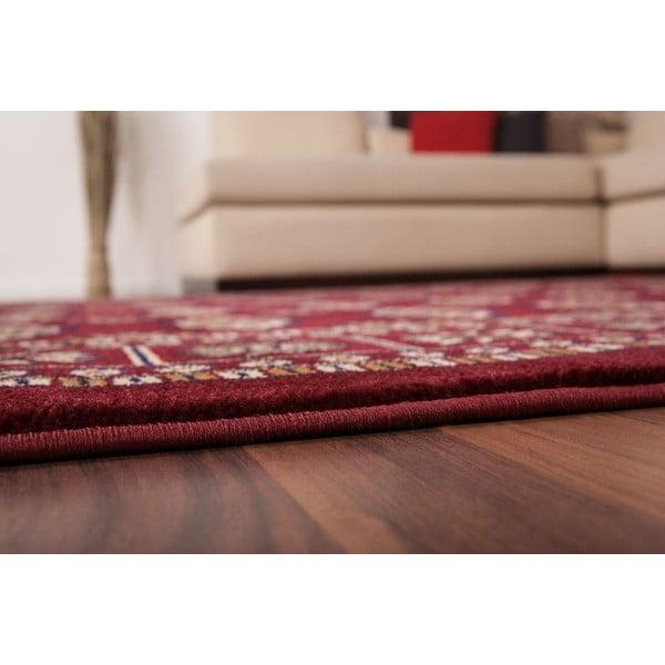 Dywan Salta Red, 160x230 cm