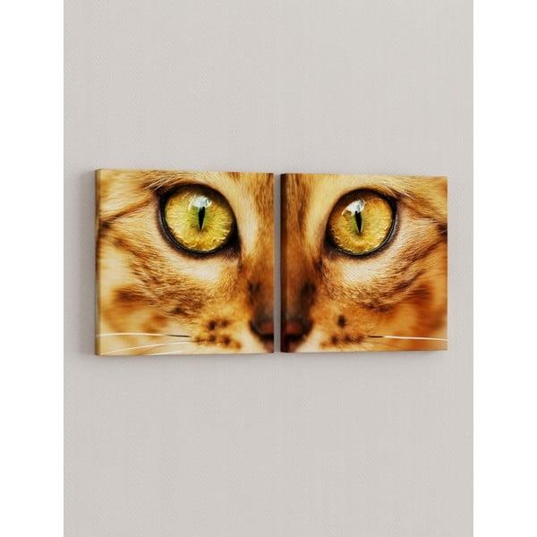 Zestaw 2 obrazów Oczy kocicy