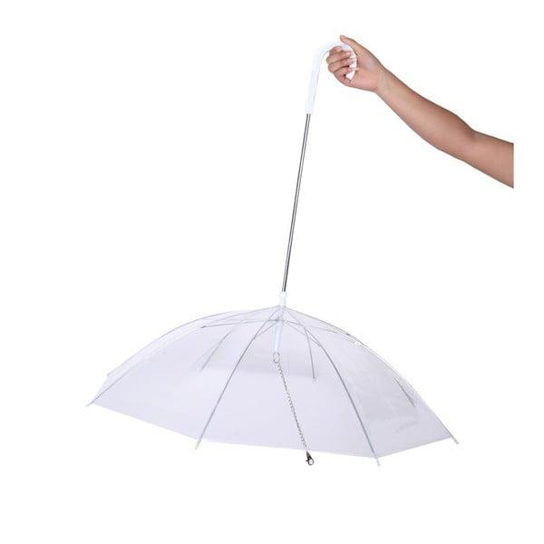 Parasol dla psów Moon Dog