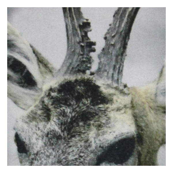 Poduszka Christmas Roe 50x50 cm