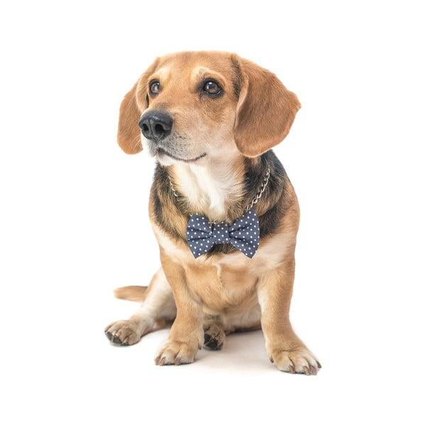 Mucha dla psa Funky Dog Bow Ties, roz. L, szara w korpki
