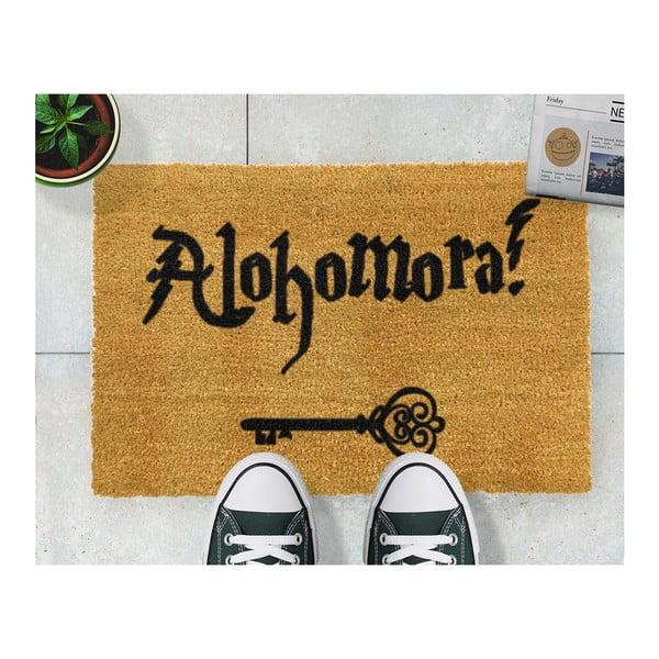 Wycieraczka Artsy Doormats Alohomora, 40x60 cm