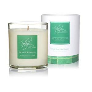 Świeczka o zapachu woskownicy, mięty, kamfory i jałowca Skye Candles Tumbler, 45h