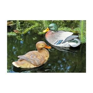 Zestaw pływającego kaczora i kaczki Allesa