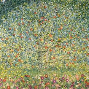 Reprodukcja obrazu Gustava Klimta - Apple Tree, 50x50 cm