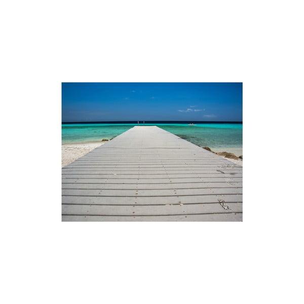Obraz Paradise, 50x65 cm